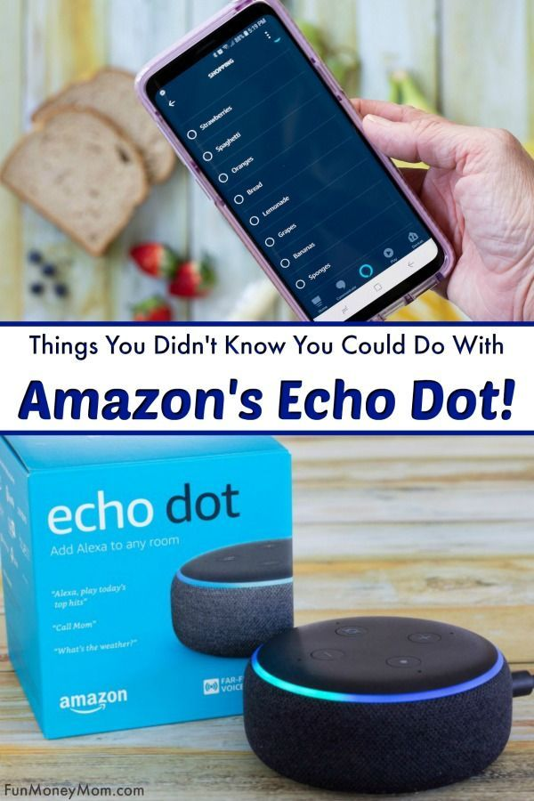 15 Awesome Things You Can Do With The Echo Dot | Mom Blogger ...