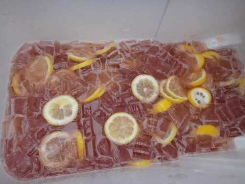 Total Frat Move | The Hunch Punch Handbook