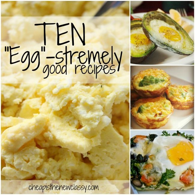 10 Egg-stremely Good Egg Recipes For National Egg Day and World ...